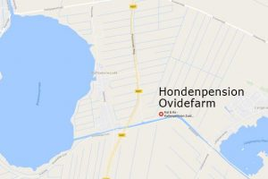 Google Maps Hondenpension Ovidefarm