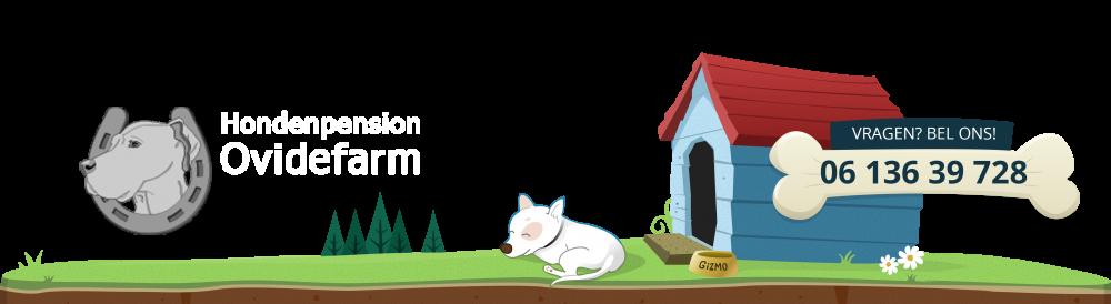 Hondenpension Ovidefarm